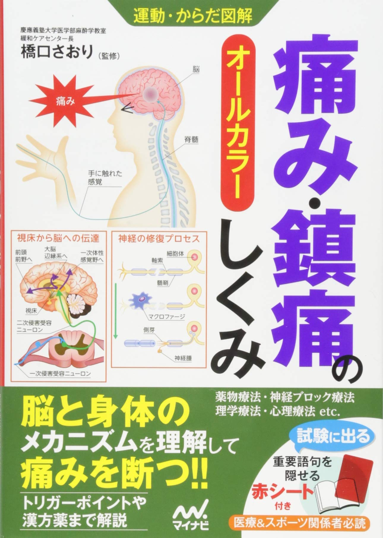 の メカニズム 痛み 痛みの基礎知識|痛みが伝わる仕組み/痛みの悪循環