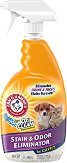 product image for Arm & Hammer Pet Stain and Odor Eliminator, 32 Fl Oz (Pack of 2)