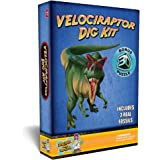 Discover with Dr. Cool Velociraptor Dinosaur Dig Kit –Excavate 3 Real Dino Fossils!