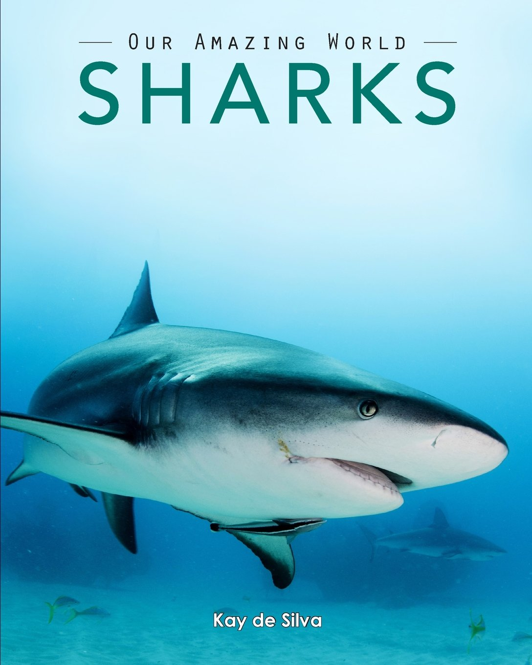 Buy Sharks: Amazing Pictures & Fun Facts on Animals in Nature Book ...
