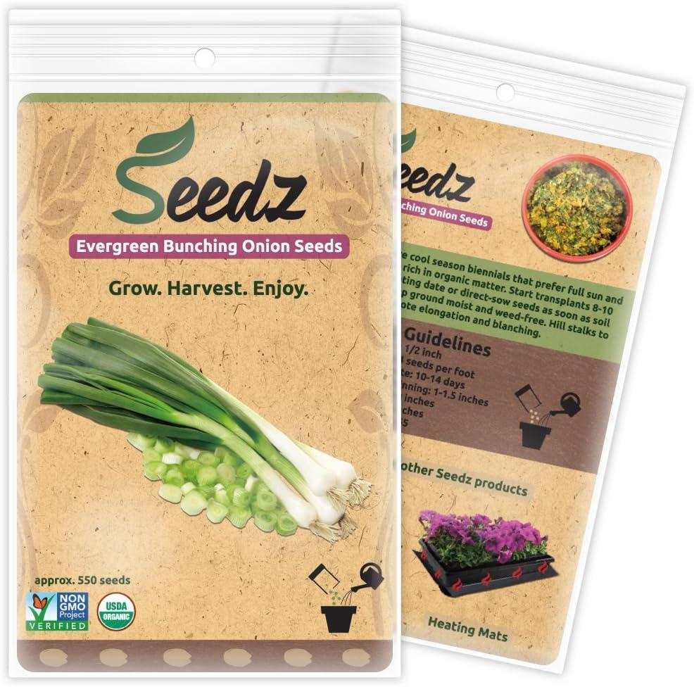 Organic Onion Seeds, APPR. 550, Green Onion, Heirloom Vegetable Seeds, Certified Organic, Non GMO, Non Hybrid, USA