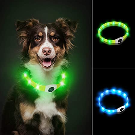 Laroo Led Dog Collar Usb Rechargeable Night Safety Dog Collar Luminous Collar For Small Medium Large And Long Haired Dogs 3 Modes Pet Supplies