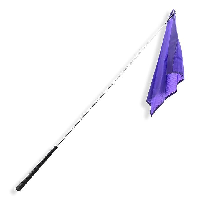 """Southwestern Equine 48"""" Training Flag Horsemanship Flag Horse Lunging Training Stick Silver Shaft and Nylon Flag (48"""", Purple)"""