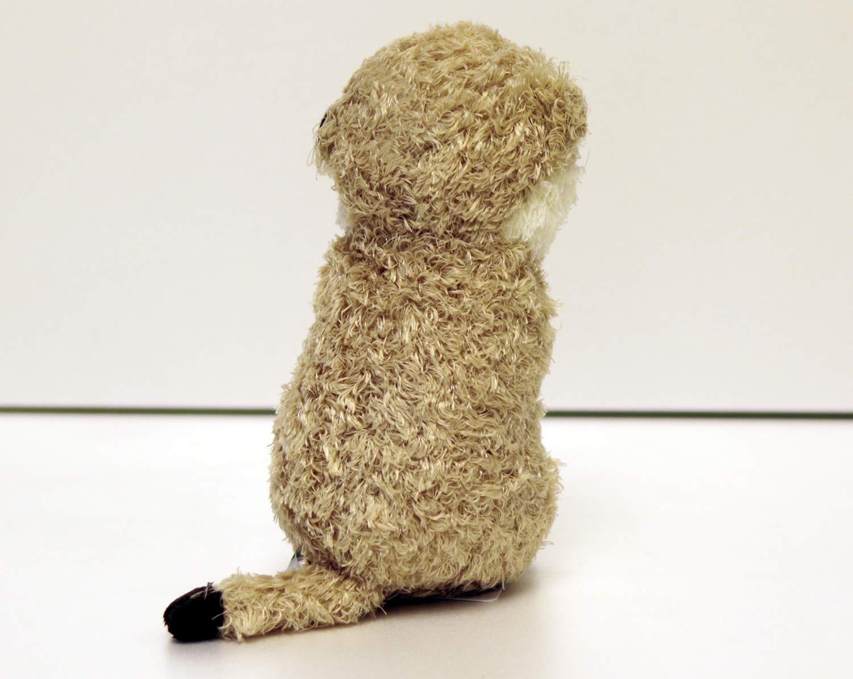 Toy Meerkat Carino Suricata Suricatta Bambino Animal Store rdCxBWoe