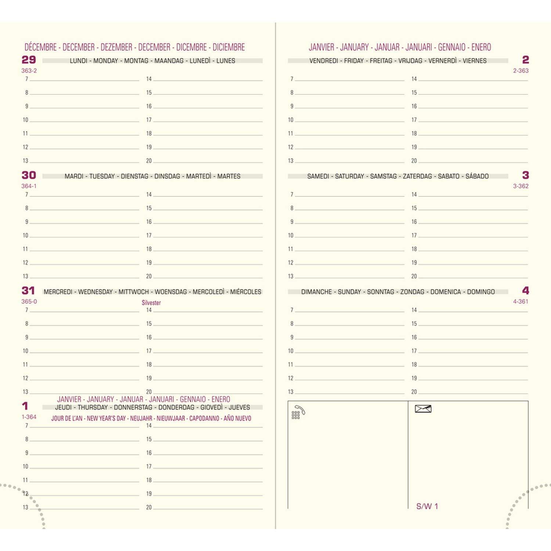 Amazon.com : Exacompta Internal Refill for Eurotime 16 Diary ...