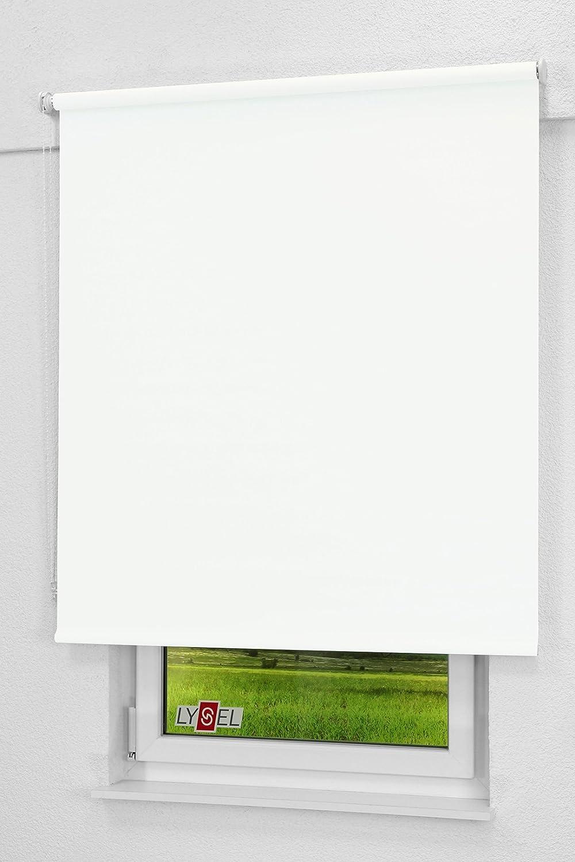 LYSEL Outlet - Qualitätsrollo abdunkelnd weiß, (B (B (B x H) 173cm x 190cm in weiß B07NMLYCQD Seitenzug- & Springrollos 2f32e3