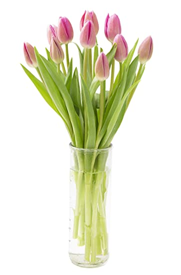 Mothers Day Tulip Bouquet >> Amazon Com Order By Thursday 12 00pm Est To Get It Before Mother S
