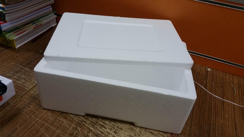 Caja de poliestireno espuma 35 x 23 x 12,5 cm tamaños internos 3 ...