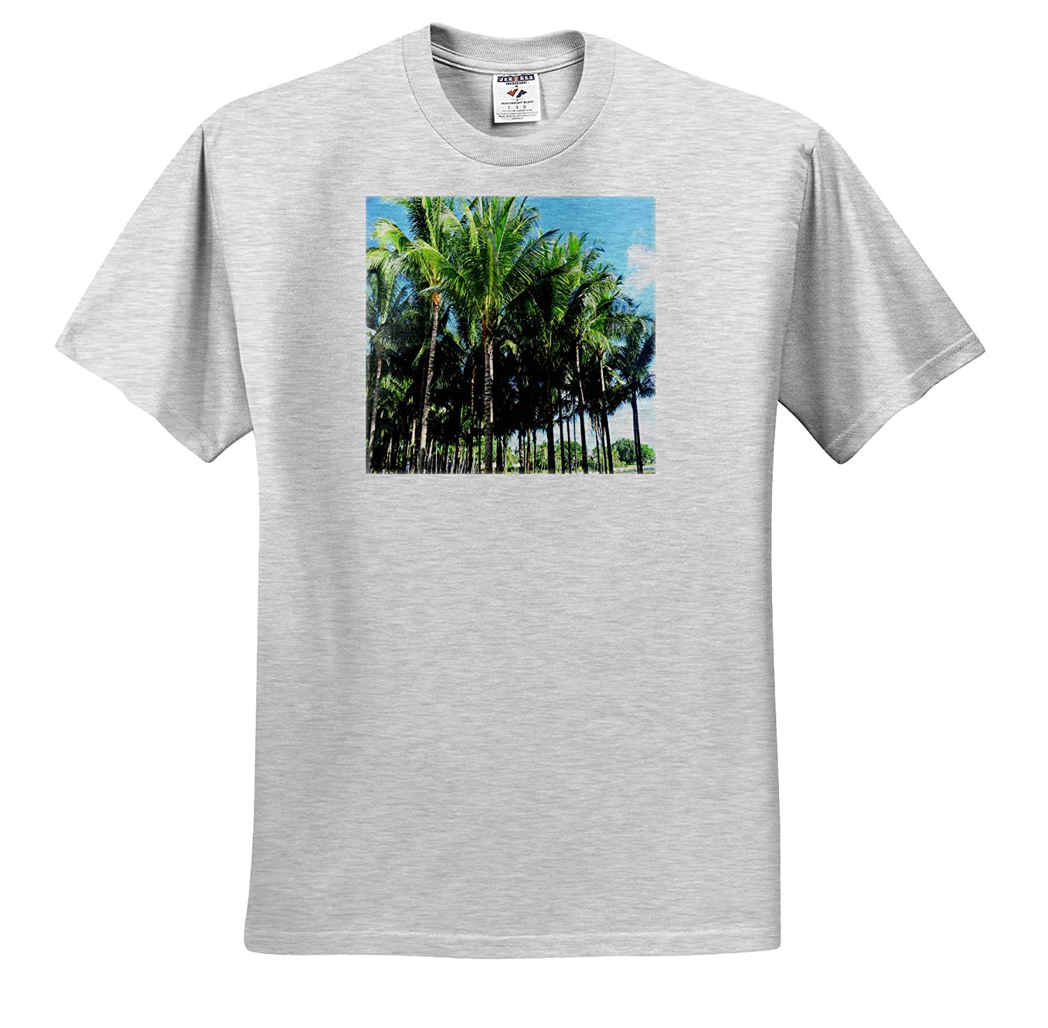 Image of Tight Group of Palm Beach Palms Against Blue Sky T-Shirts Fantastic Florida 3dRose Lens Art by Florene