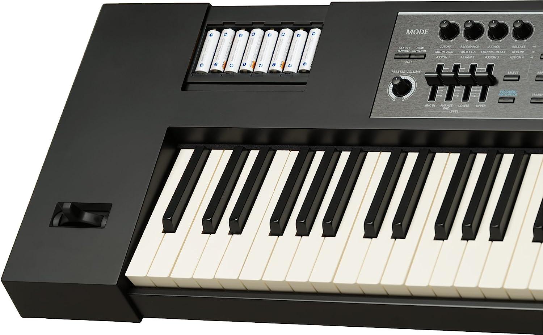 Roland Sintetizador de rendimiento de llave pesada (JUNO-DS88 ...