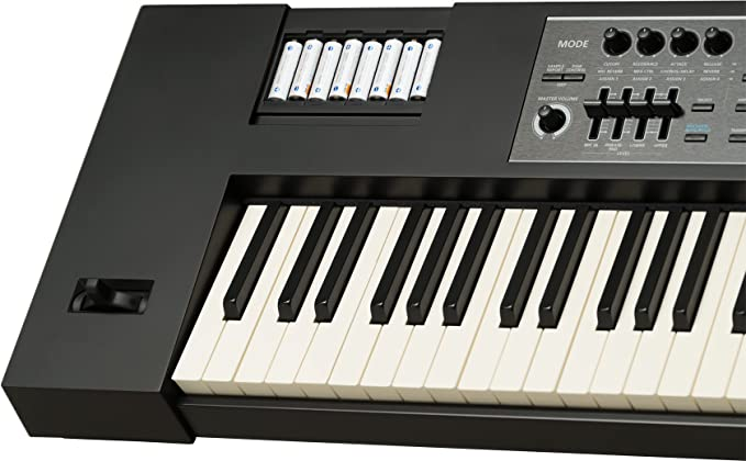 Roland Lightweight, 88-note Weighted-action Keyboard with Pro Sounds  (JUNO-DS88)