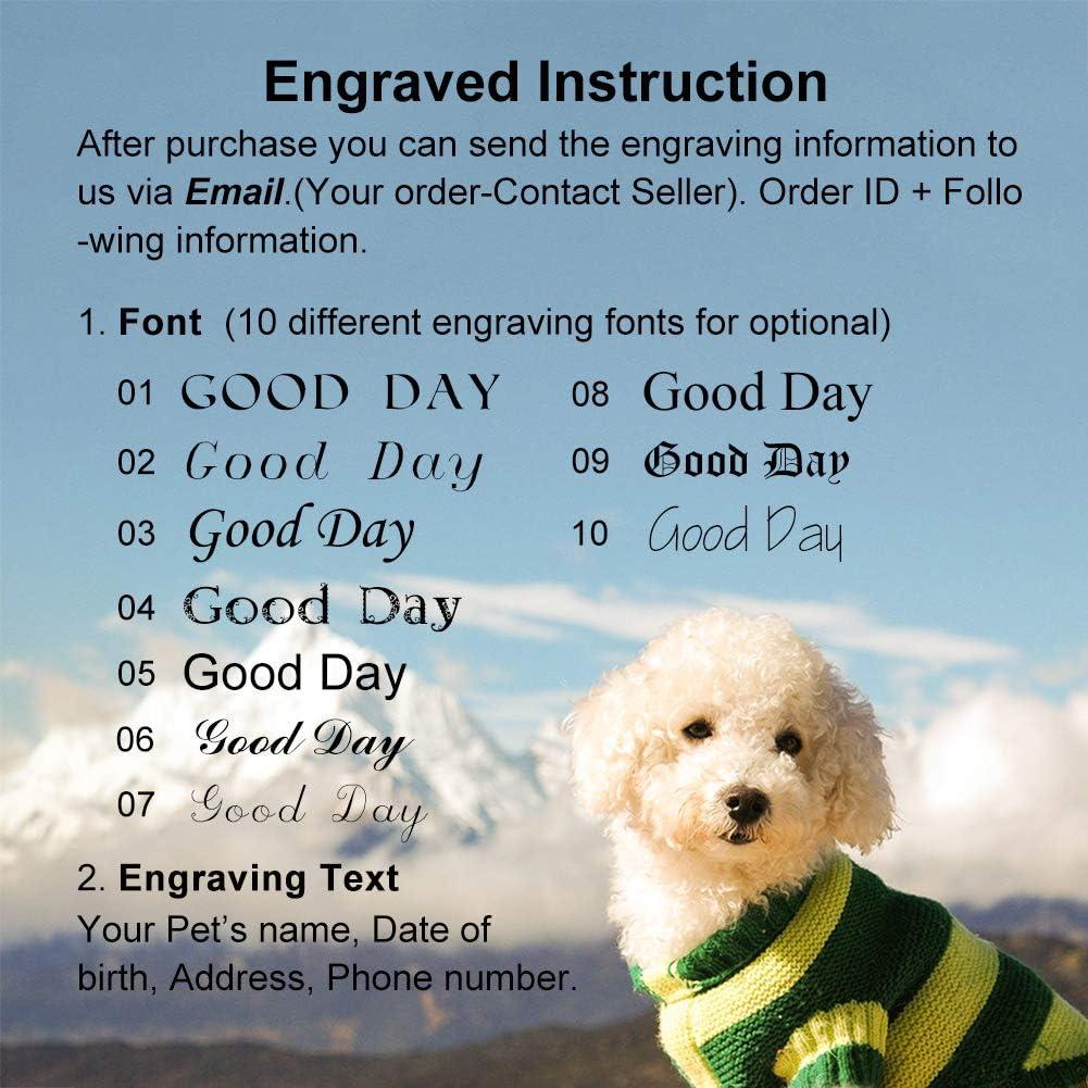 Weiye Hundemarken und Katzenmarken mit Gravur Edelstahl Knochen personalisierbar Hundemarke f/ür kleine und gro/ße Hunde
