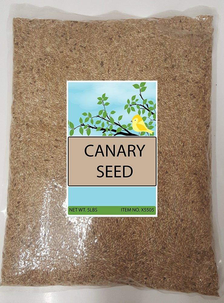 Sweet Harvest Canary Seed Alpiste Bird Food