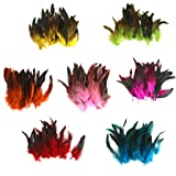 Wholesale 50 beautiful feathers 12-18cm / 4-7inch