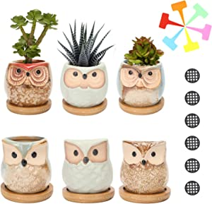 Succulent Planter Pots Owl Ceramic – Small Planter Pots with Drain Hole &amp Sweepstakes