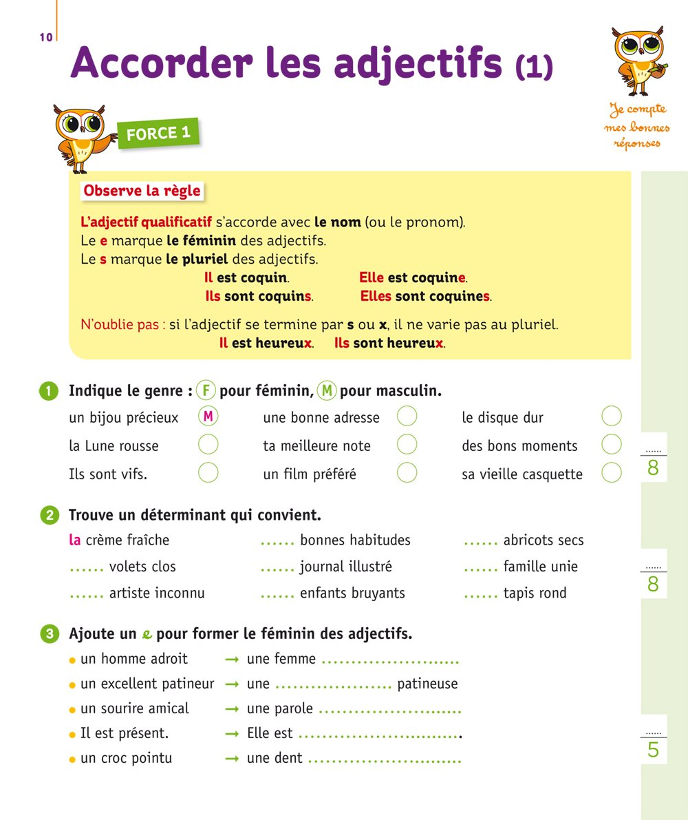 Mini Chouette - Mieux comprendre les accords CM1/CM2 (French Edition): Lou Lecacheur, Hatier: 9782401030732: Amazon.com: Books
