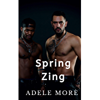 Spring Zing: A Reverse Harem Short Story (English Edition)