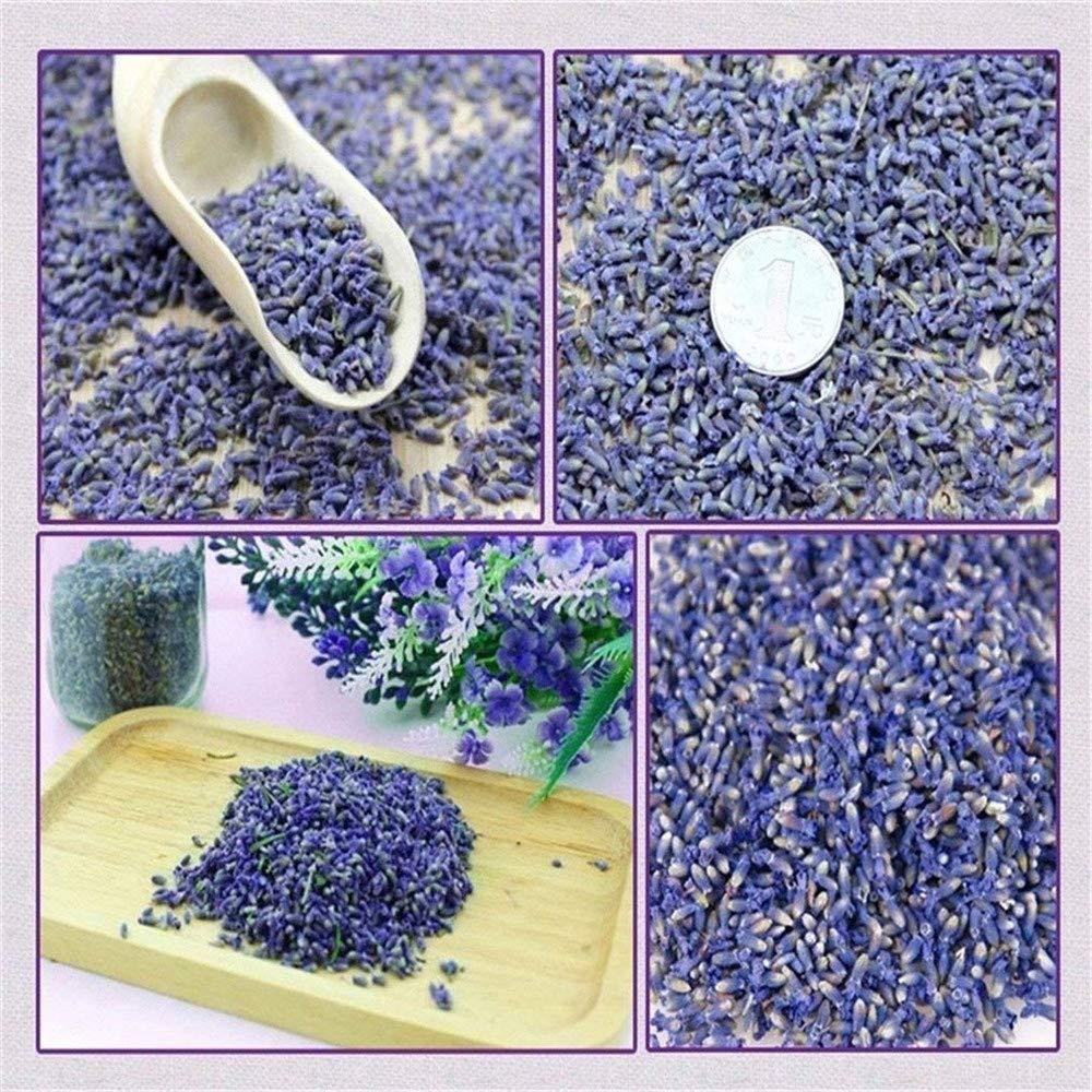 EBUYOM Set of 3 Packs Dried Lavender Buds Scented Lavender Sachets Fragrant Dry Flowers Home Fragrance for Closet Drawer Dresser Cupboard Home Decor