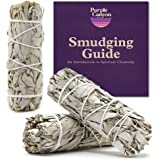 PURPLE CANYON White Sage Bundles - (3 Pack) - Sage Smudge Stick for Home Cleansing Incense Healing Meditation and…