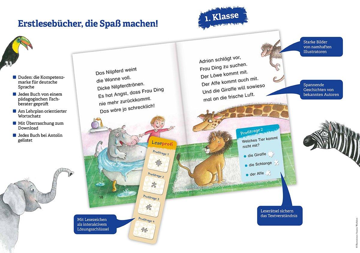 Leseprofi – Die geheimnisvolle Schatzkarte, 1. Klasse DUDEN ...