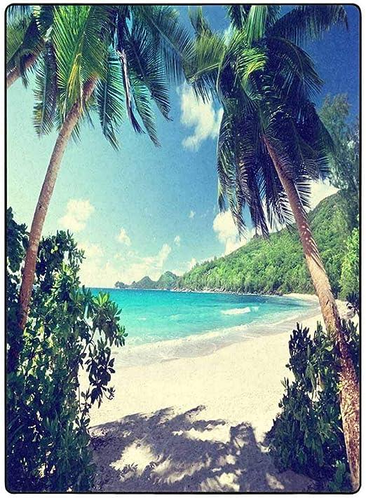 MJKII Cobija Blanket Throw, for Picnic,Beach,AC Room,Travel, Outdoor, Decorative Lightweight,Warm Cozy Nursery Blanket Couch Decorative, Nautical | Marine Skull with Roses - 54