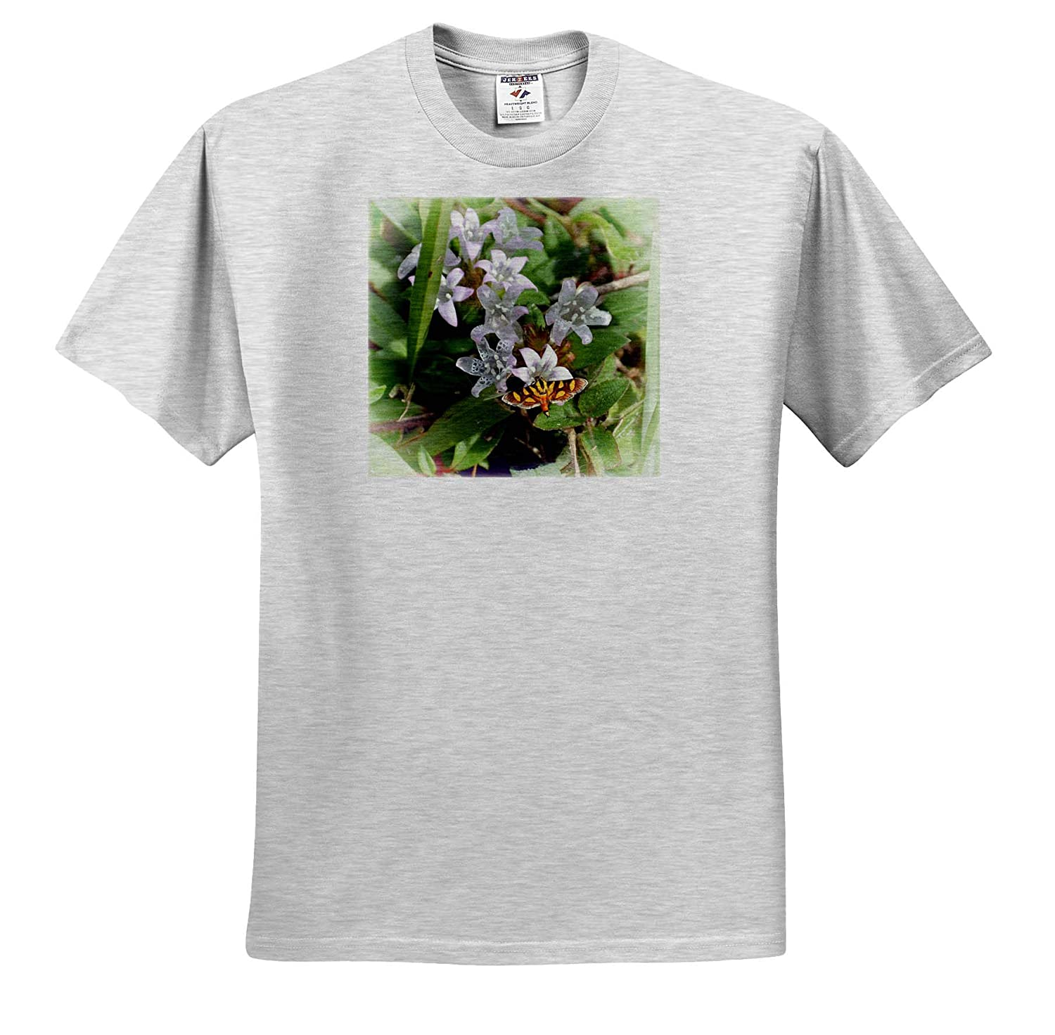 3dRose Susans Zoo Crew Animal T-Shirts Brown and Yellow Moth White Flowers Grass Insect