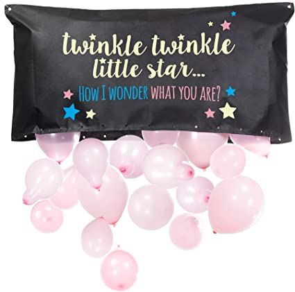 Twinkle Twinkle Little Star Gender Reveal Party Banner