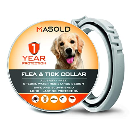 Best flea and tick control for cats dogs