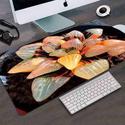 e261ad57859b7 Amazon.com : Tzsysb Fashion Mouse pad Large Plant Table mat ...
