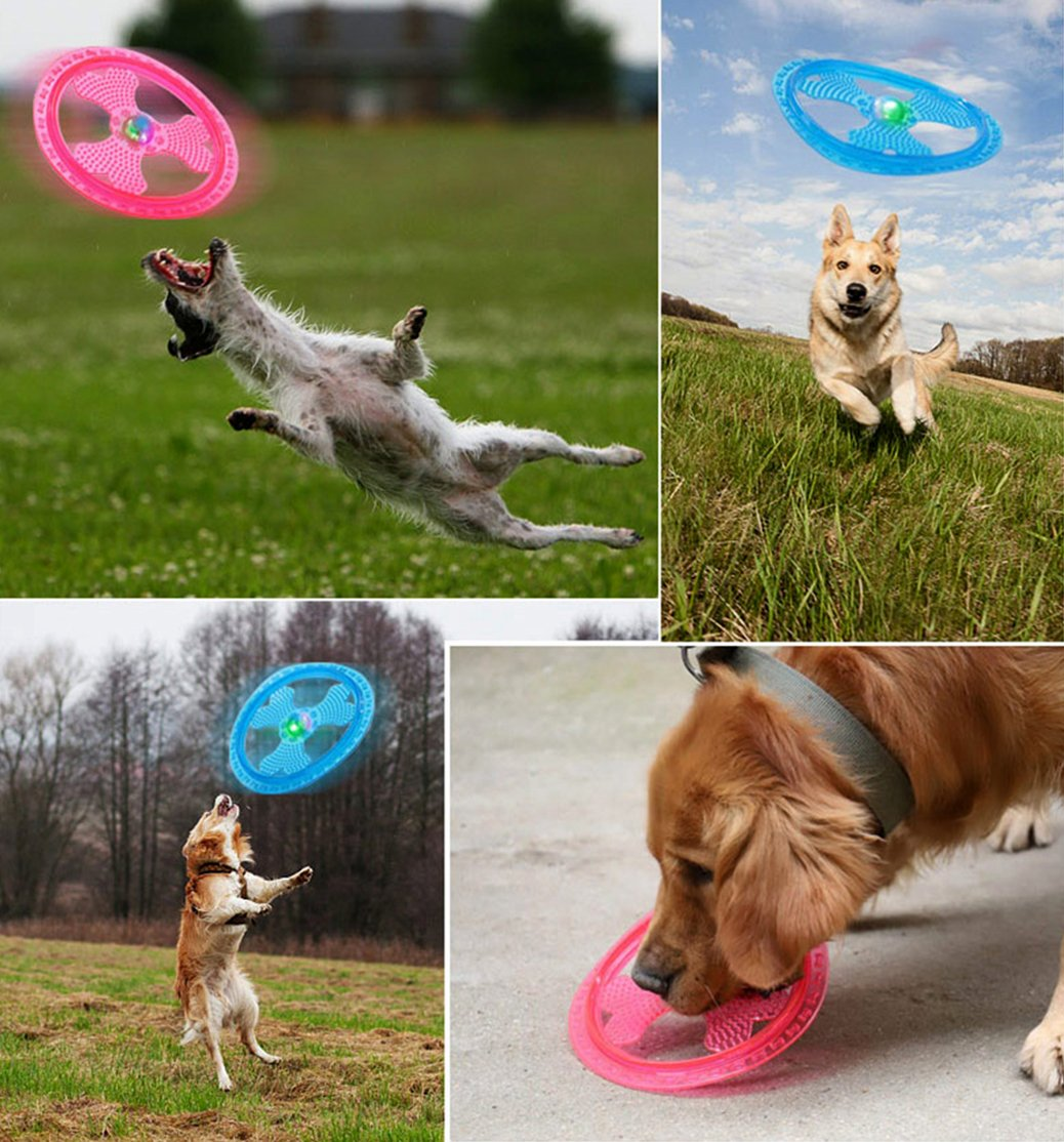 Light Up Frisbee for Ultimate Night Time Play Wandrola Flying Disc Dog Sport Toy with Flashing LED Lights