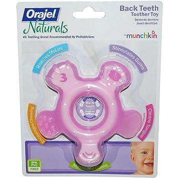Amazon.com: Orajel Naturals, espalda dientes Mordedor ...