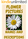 Flowers pictures: flowers, names, types and descriptions. Book One. (English Edition)