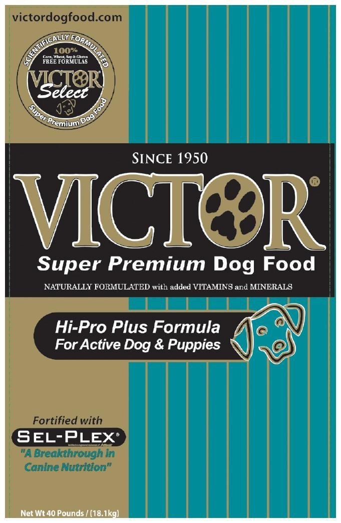 what is the best puppy food