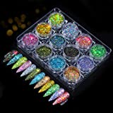 Hanzel Holographic Nail Powder Set - 12 Jars Flashing Crystal Sequins,Glitter Aurora Chameleon Powder. Manicure Pigment for N