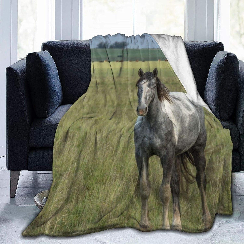 Colorful products Manta de forro polar de 127 x 152 cm – Caballo criollo en el pasto para el hogar de franela suave y cálida manta de felpa para cama/sofá/oficina/camping