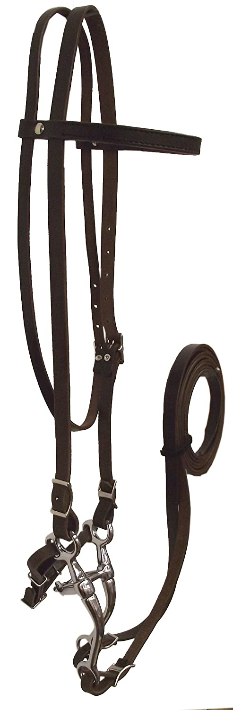 Hamilton Headstall Bridle Set, 5 8-Inch, Horse, Havana Brown