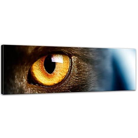 "Bilderdepot24 Cuadros en Lienzo""ojo de gato"" 120x40 cm - listo tensa, directamente"