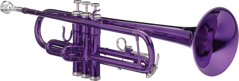 Bb Taschen Trompete Blech Blasinstrument Messing Trumpet Leicht Koffer violett