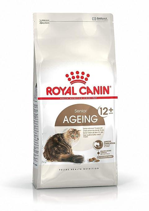 Royal canin Ageing + 12 pienso para gatos: Amazon.es: Productos ...