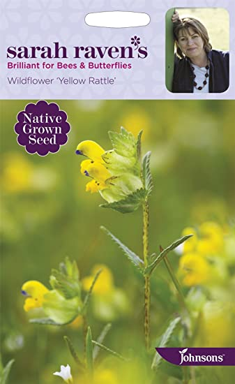 Johnsons sarah ravens flowers wildflower yellow rattle 150 johnsons sarah ravens flowers wildflower yellow rattle 150 seeds mightylinksfo