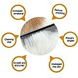 HBuir Wooden Handle Cat Comb Grooming Hair
