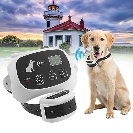 wireless dog leashes