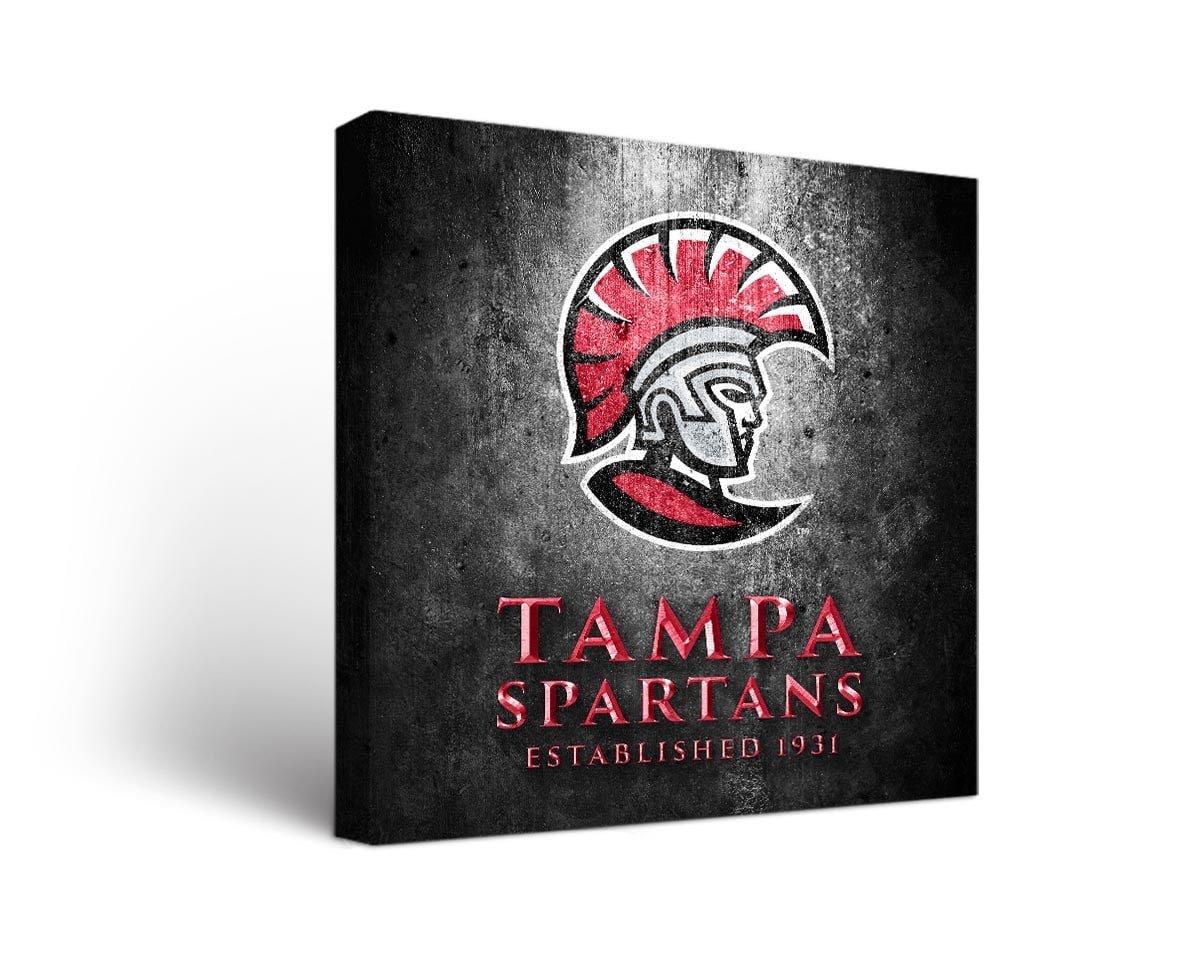 大学のTampa Spartansキャンバス壁アートメタルデザイン 18x24  B01MG0IY8H
