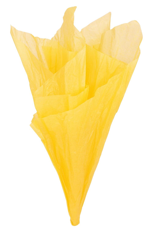 FiveSeasonStuff Grande Carta Velina, Carta da Regalo / Carta da Imballaggio, 66cm x 50cm / 26 x 20 inches (Oro, 50pcs)