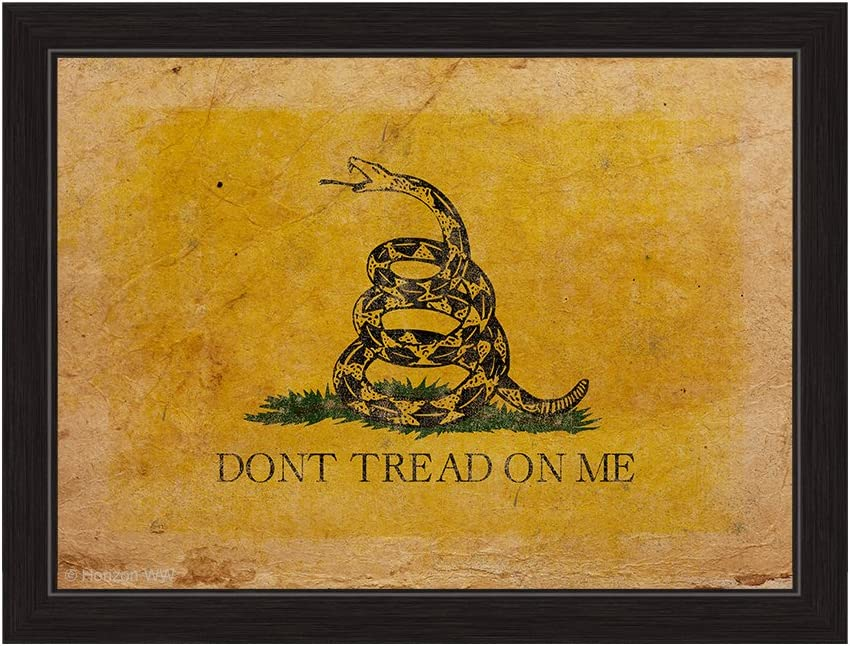 Don T Tread On Me Gadsden Flag Distressed Framed Canvas Art Print Wall Décor 20x30 Posters Prints