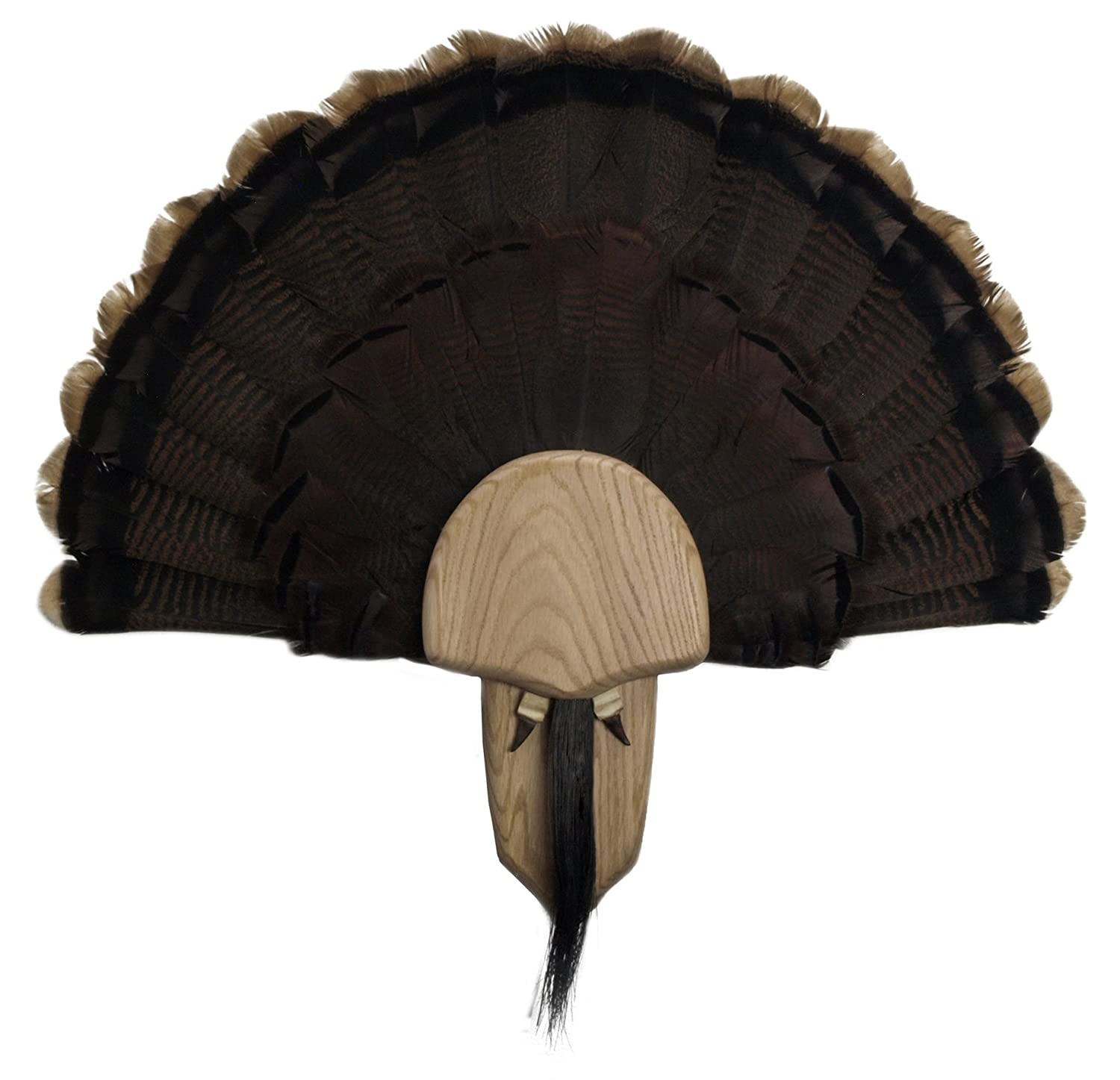 Walnut Hollow Country Turkey Mounting & Display Kit in Solid Oak 38325