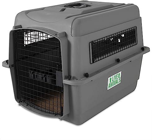 Amazon Com Petmate Sky Kennel Pet Carrier 28 Inch Pet Supplies
