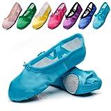 Amazon Price History for:Kid Girl's Satin Practise Ballet Slipper Yoga Shoe