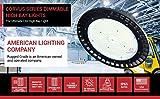 20,250 Lumen -150 Watt Corvus Series LED High