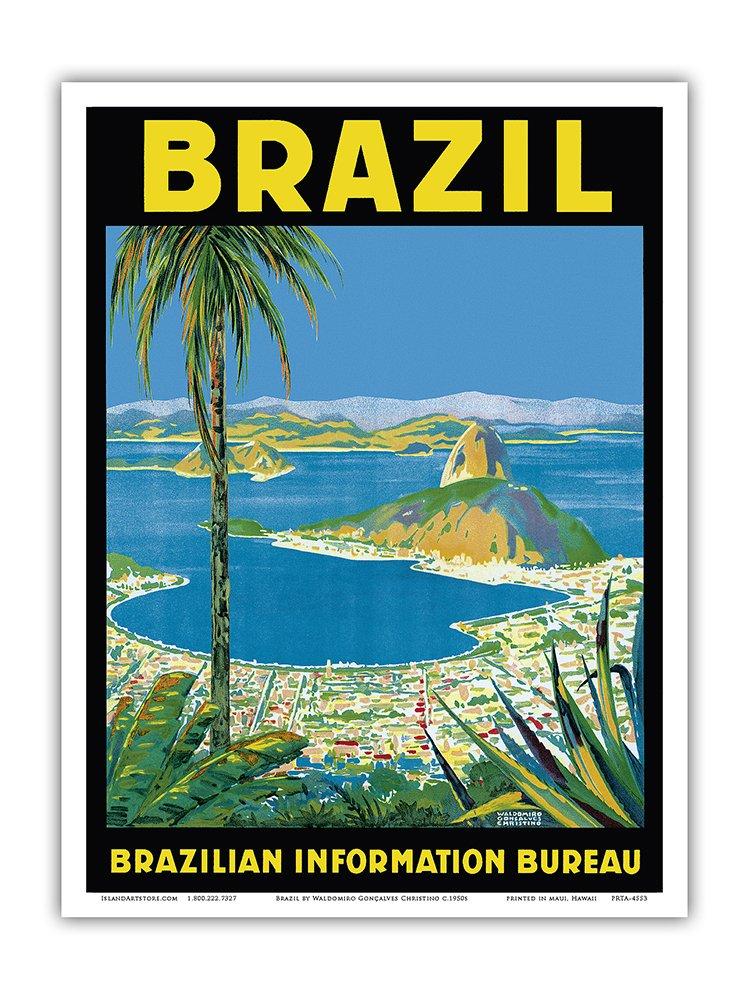 Fly Rio de Janeiro Brazil South America Vintage Travel Advertisement Art Poster